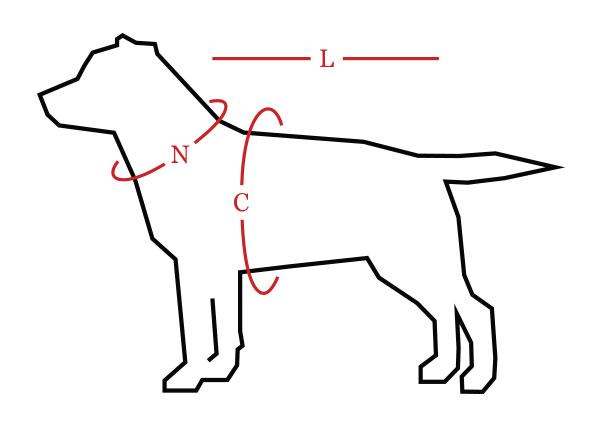 Swish Dog Measuring Guide