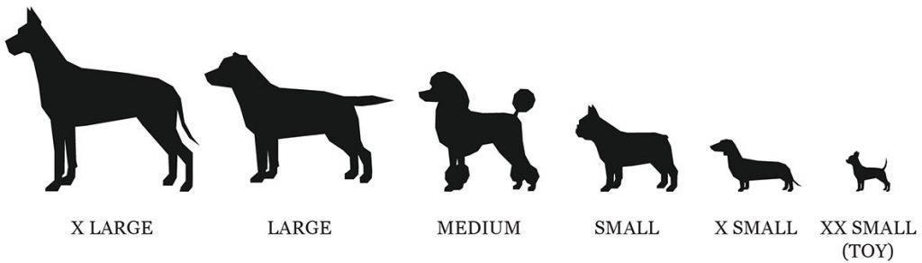 Swish Dog Size Guide
