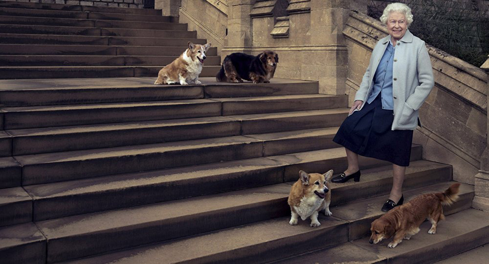 What are the names of the Queen's corgis? Her Majesty Queen Elizabeth's beloved dogs have really unusual names Swish London